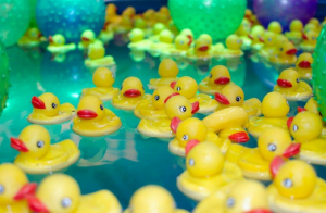 duckoverload-email-list-cleaning